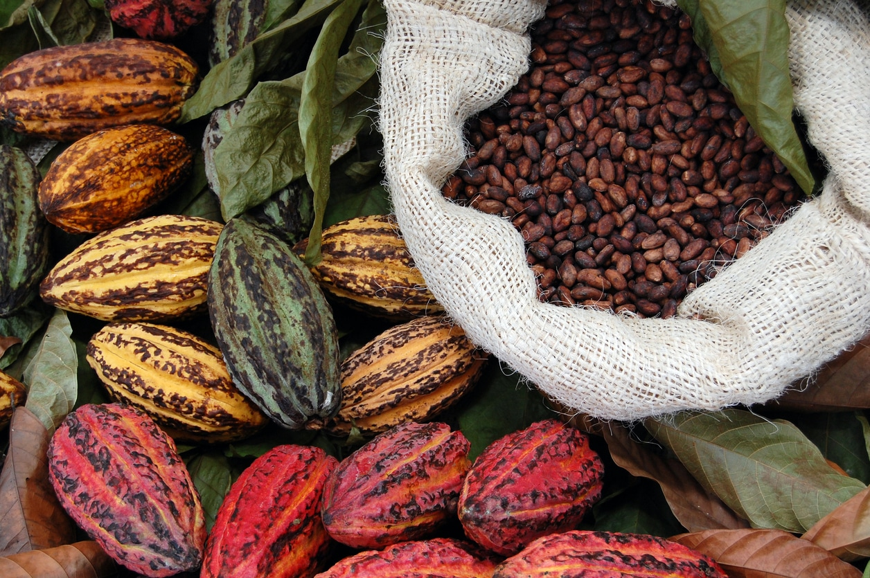 spice farm tours in costa rica
